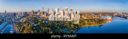 Sydney city high-rise towers of CBD and major landmarks behind domain parklands and Royal National gardens on a - Stock Photo