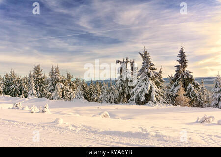 Mountain winter landscape, trees in mountains covered with hoarfrost and snow illuminated by the sun at late afternoon. - Stock Photo