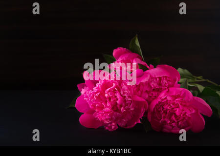 bouquet of of peonies pink flowers on dark blurry background. darkened photos. Shallow depth of field.