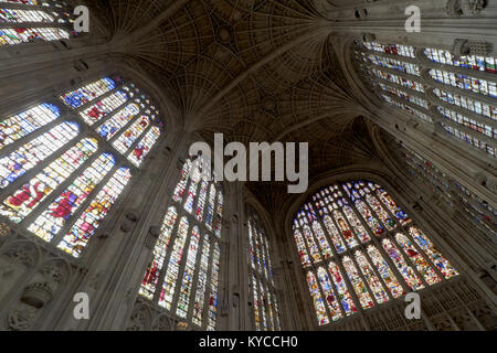 Fan vault ceiling and stained glass of Kings College chapel at the University of Cambridge, England - Stock Photo