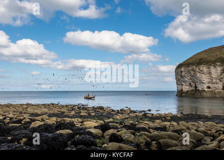 Small traditional fishing boat surrounded by sea birds at North Landing, Flamborough, North Yorkshire, England. - Stock Photo