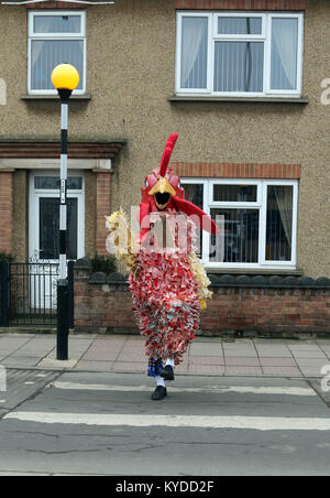Whittlesey, Cambridgeshire, UK. 13th Jan, 2018. The Peterborough Morris chicken/fool crosses the road to make his - Stock Photo