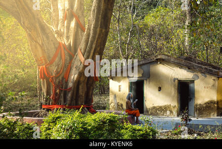 A classic view of  indian sadhu old holy man reading newspaper in front of his hut - Stock Photo