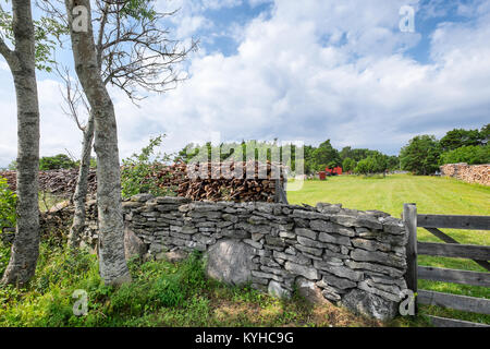 Swedish country landscape with old stone wall and stacked firewood. Location: Gotland, Sweden - Stock Photo