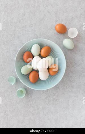 Blue and brown chicken eggs and white duck eggs, whole and halves, in a pastel blue bowl on grey textured background. - Stock Photo