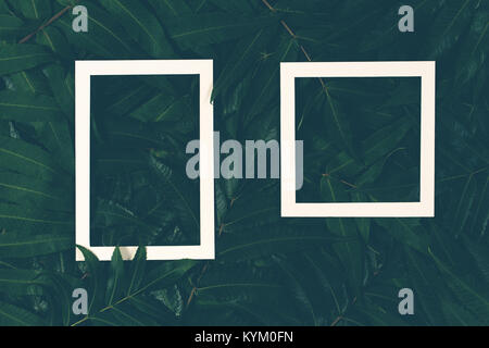 Creative layout made of green leaves with two white frames. Top view, flat lay - Stock Photo