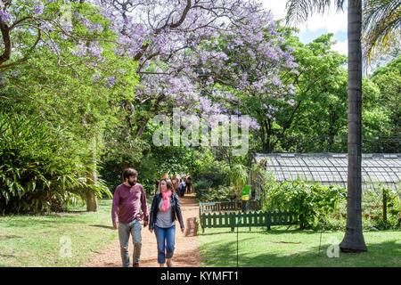 Greenhouse of the Botanical garden \'\'Carlos Thays\'\'. Palermo, Buenos ...