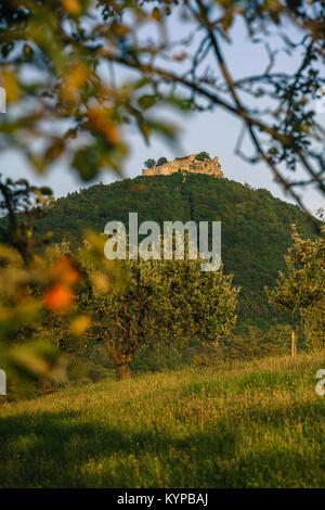 Festungsruine Hohenneufen im Herbst - Stock Photo
