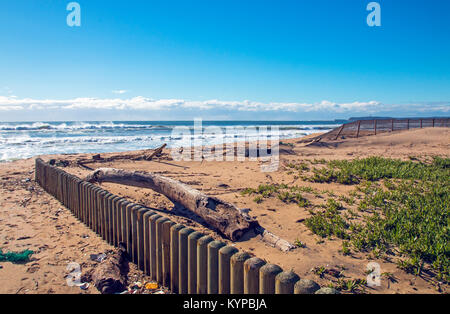 Wooden pole barrier driftwood garbage and green dune vegetation against sea and blue cloudy coastal skyline in Durban, - Stock Photo
