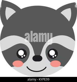 cute raccoon animal head image - Stock Photo