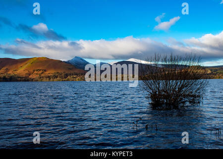 Bush in the water, blue sky, mountains and clouds - Stock Photo
