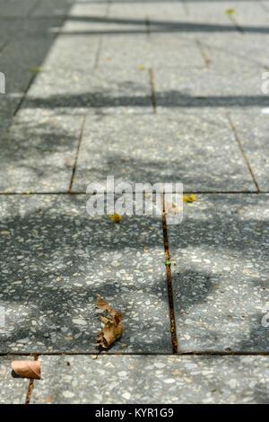 Pavement and walkways around Riverway, Townsville, Queensland, Australia - Stock Photo
