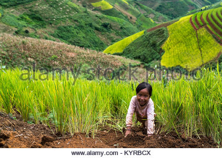 SAPA, VIETNAM - SEPTEMBER 08: Unnamed boy of H'mong in Sa Pa, Vietnam September 08, 2017 Sapa is a mountainous city - Stock Photo