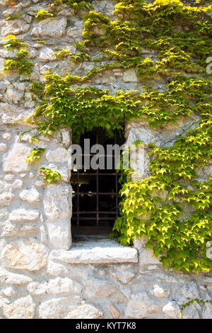 A narrow window with a lattice on an ancient building in a wall of wild stones is covered with twigs of young grapes - Stock Photo