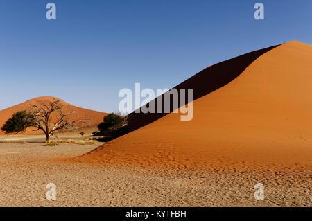 Dune 45 in the Namib-Naukluft-Nationalpark near Sesriem, Namib Desert District Maltahöhe Namibia - Stock Photo