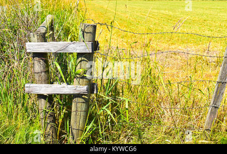 Barb wire fencing in front of an empty field.  The wire is in focus from one post to the other. - Stock Photo