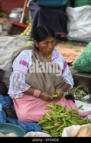 Otavalo, Ecuador - December 30, 2017: closeup of an indigenous woman cleaning peas in the weekly farmers market - Stock Photo