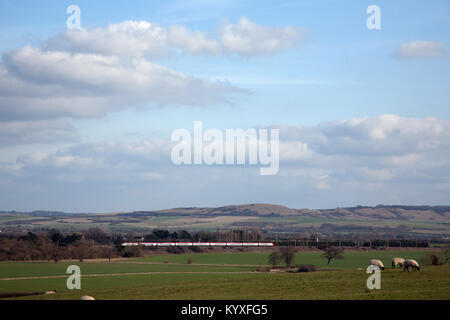 A Virgin Trains Class 390 Pendolino train passes in front of Ivinghoe Beacon with sheep in the foreground. Buckinghamshire, - Stock Photo