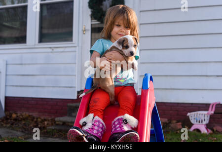 A toddler girl holds a beagle puppy on a red slide in the summer. - Stock Photo