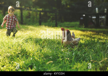 Boy on field with hens in foreground - Stock Photo