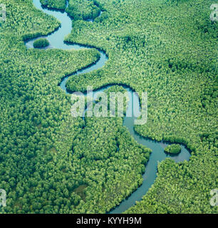 Aerial view of meanders and river capture features in mangrove forest at the delta of the Sierpe River at Terraba - Stock Photo