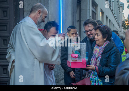 Madrid, Spain. 17th Jan, 2018. The traditional San Antón Festival took place in the neighborhood of Malasaña, in - Stock Photo