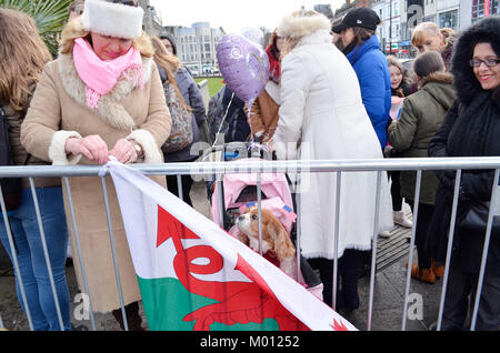 Cardiff, UK. 15th Jan, 2018. Camilla the dog is one of the first inline at Cardiff Castle ahead of His Royal Highness - Stock Photo