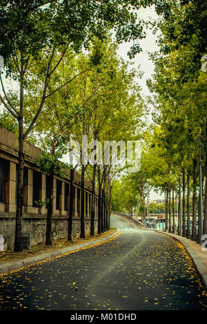 View to small road on city street with green trees in autumn - Stock Photo