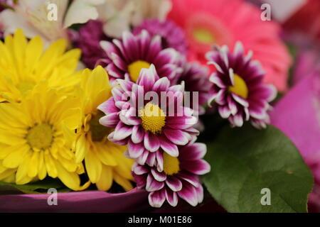 Bright summer flowers bouquet - Stock Photo