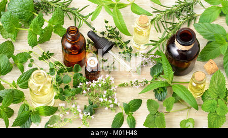 fresh herbs, flowers and essential oils on the wooden board - Stock Photo