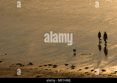 Silhouette of a man and woman (couple) walking on the beach with their dog at sunset. - Stock Photo