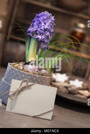 Purple hyacinth and greeting card on winter kitchen with plate of cookies - Stock Photo