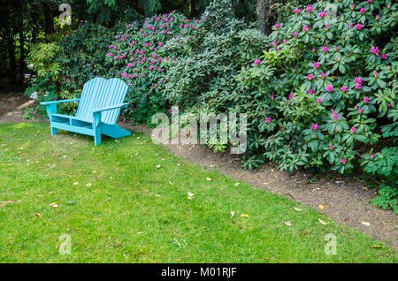 Blue wooden bench in a rhododendron garden - Stock Photo
