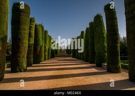CORDOBA, ANDALUSIA / SPAIN - OCTOBER 14 2017:  GREEN TREES IN THE PARK - Stock Photo