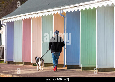 Bournemouth, Dorset, UK. 18th Jan, 2018. UK weather: a lovely sunny day at Bournemouth beach. Walking the dog along - Stock Photo