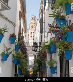 Calleja de la Flores and Mezquita Tower, Cordoba, Spain - Stock Photo