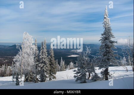 Mysterious winter landscape majestic mountains with snow covered tree. - Stock Photo