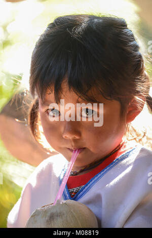 CHIANGMAI, THAILAND - JANUARY 24, 2015: Indigenous little girl sucking coconut jiuice in 22nd Traditional Skirt - Stock Photo