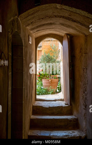 Stairway with olive plant, Monastic Church Greek Orthodox two-nave church, National Monument of Crete in the struggle - Stock Photo