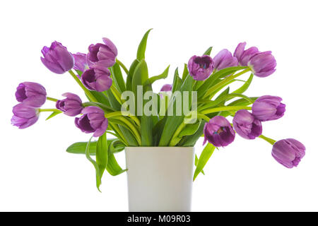 Bunch of purple tulips in a white vase isolated on white background - Stock Photo