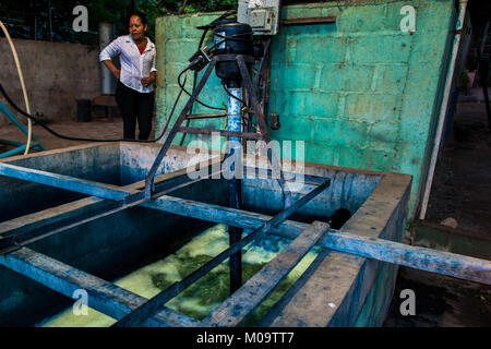The water solution, containing indigo precursors, is being stirred in a concrete tank at the manufacture near San - Stock Photo