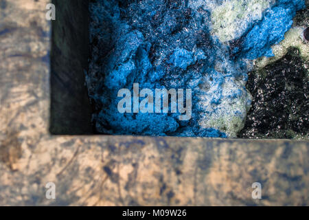 A blue foam is seen at the top of the water solution containing indigo in a tank at the manufacture near San Miguel, - Stock Photo