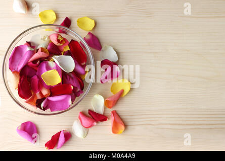 multi colored rose petals in a glass bowl and some scattered rose petals on bright wood - Stock Photo