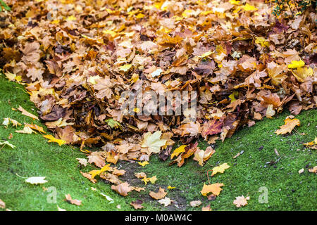 Pile of autumn leaves in the garden - Stock Photo