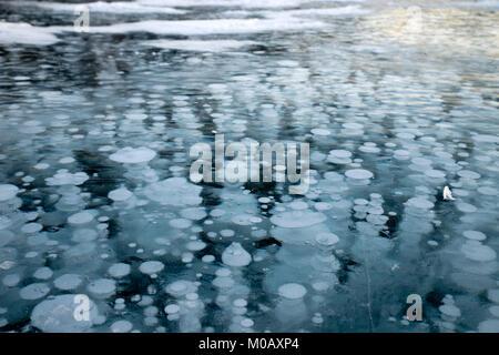 Abraham Lake with frozen methane bubbles - Stock Photo
