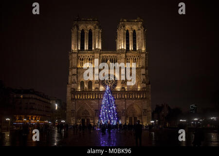 PARIS, FRANCE - DECEMBER 20, 2017:  Notre Dame de Paris Cathedral at night with the traditional Christmas tree in - Stock Photo