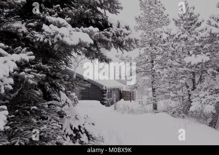 A  log cabin in the mountains at Christmas time, after a heavy snow fall occurred, covering everything with a thick - Stock Photo