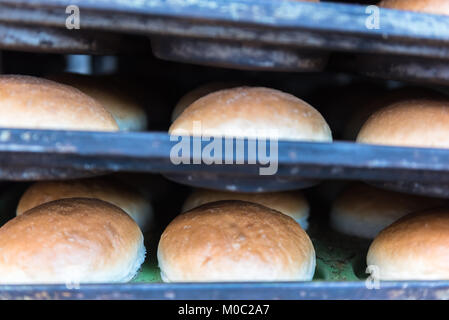 Shelves with fresh baked white wheat bread at bakery display for sale. - Stock Photo