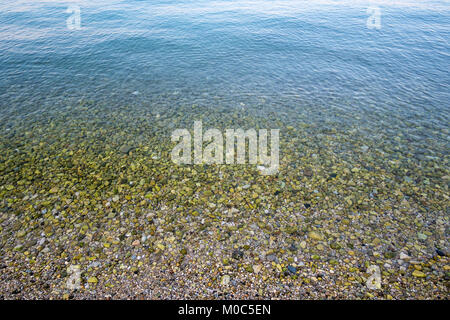 Sea surface and gravel beach full of green stones in shallow water - Stock Photo