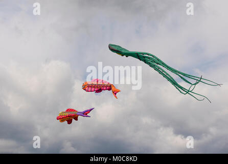 MOSCOW - AUGUST 27: Feast of kites in the park on August 27, 2017 in Moscow, Russia - Stock Photo